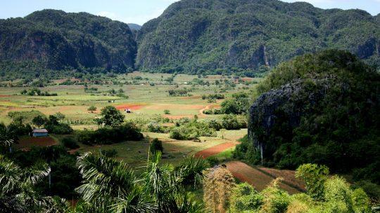 Zoom sur les activités à faire durant ses vacances à Cuba